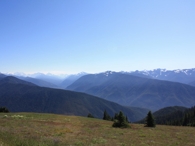 saturday : hurricane ridge