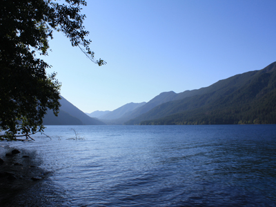 saturday : lake crescent... looks a little like a fjord, or a loch